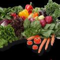 Amit a zöldségekről tudni érdemes
